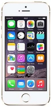 Apple Iphone 5s (16GB)